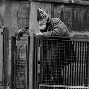 Giuseppe, qui aime tant ses pigeons. Ce sont eux qui lui rendent le sourire dans les pires moments de solitude.