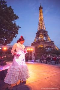 Exposicion_de-Andalucia_Paris_2088