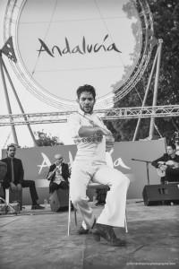 Exposicion_de-Andalucia_Paris_2295