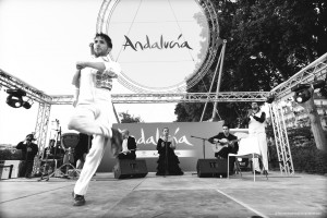 Exposicion_de-Andalucia_Paris_2316